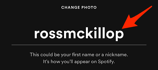 a Spotify profile name