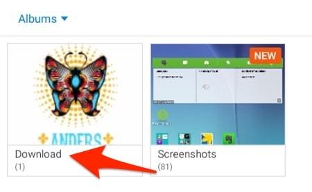 Android Photo Galleries Album view