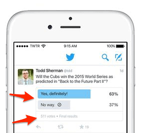 Twitter poll results simple view