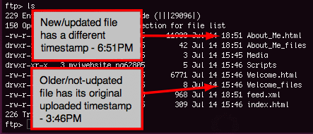 file listing displaying different timestamps
