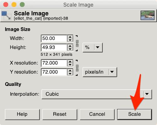 resize an image using Gimp