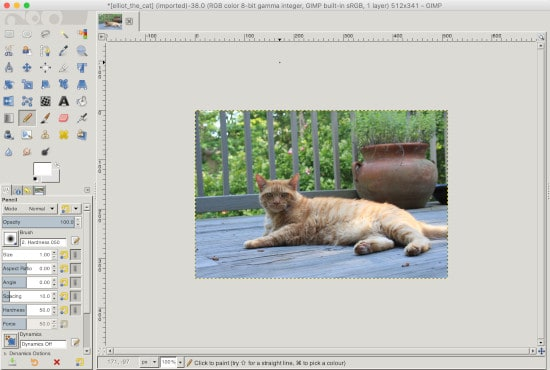 a resized file in the Gimp photo editor