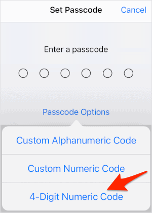 the passcode lock options for an iPad