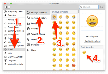 the Emoji Keyboard on a Mac with instructions added