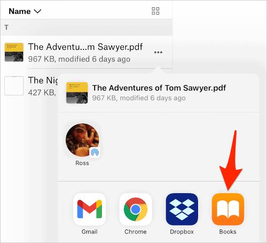 the Share menu in iOS