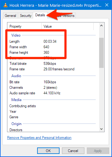 dimensions of a video file in Windows after a resize