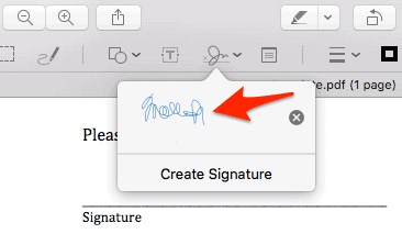 screenshot of a PDF with a signature placed inside of it