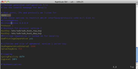 a terminal with the ssh config file open