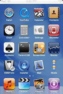 tiger basic SummerBoard Theme for the iPhone or iPod Touch