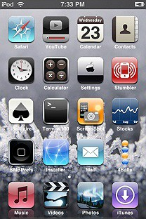 winter SummerBoard Theme for the iPhone or iPod Touch