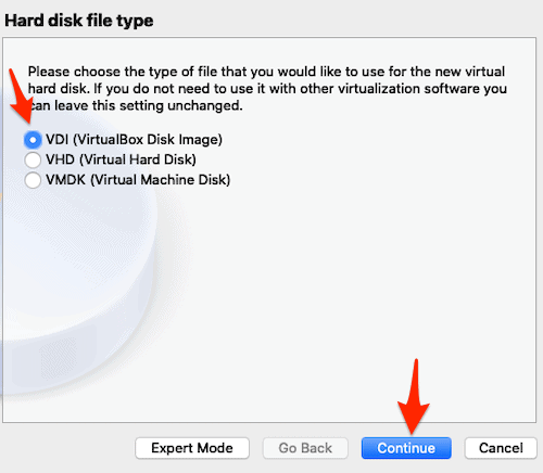 selecting a VM disk type