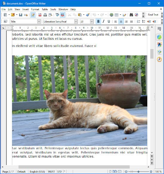 a doc file opened in Open Office Writer